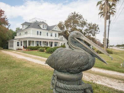 pelican front of house